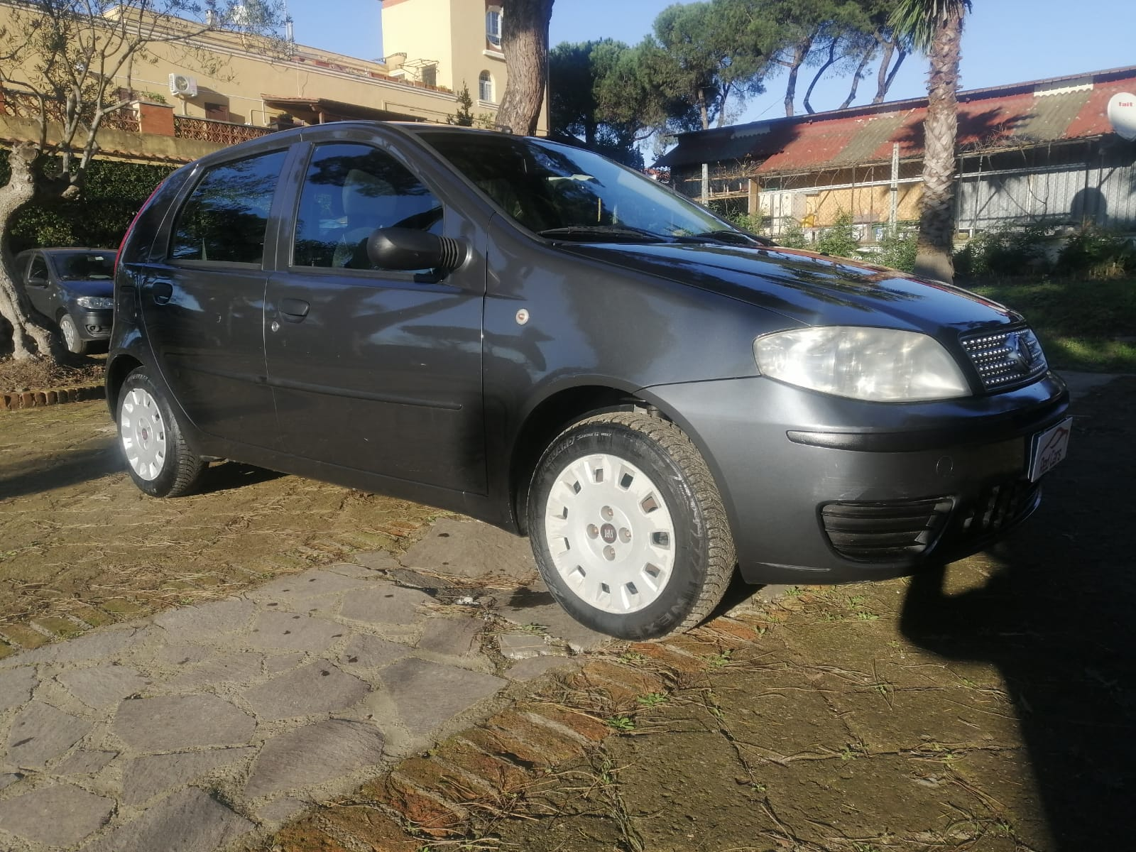 vendita FIAT PUNTO 1.2 NATURAL POWER Red cars via cropani 65 Roma