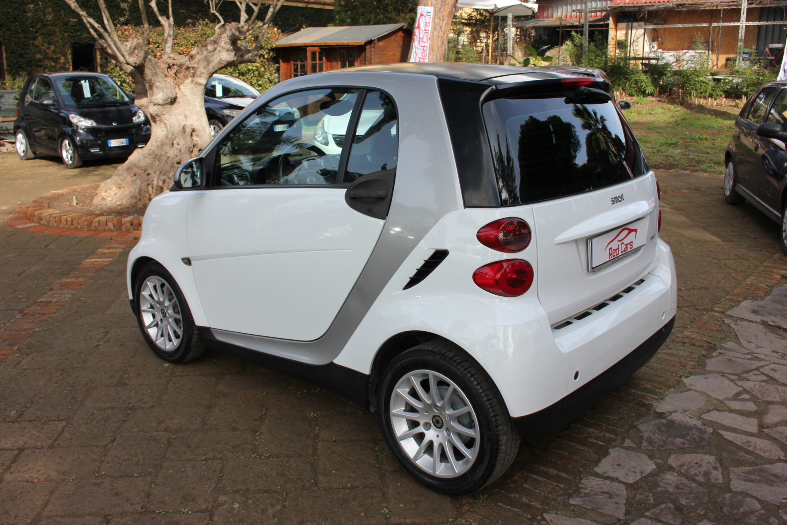 vendita SMART FOR TWO 1.0 PASSION Red cars via cropani 65 Roma